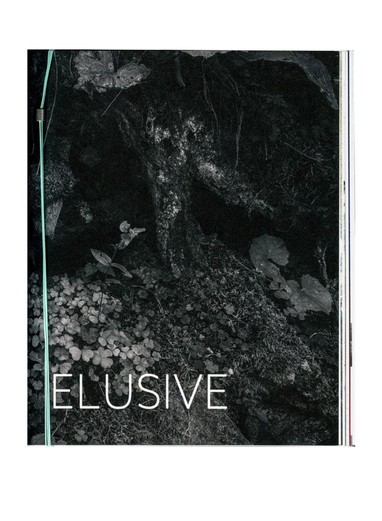 elusive-bookscan